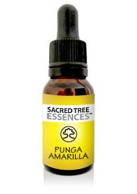 Punga Amarilla Essence (15ml)